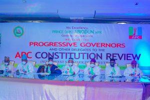 APC Constitution Review